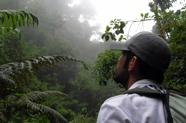 Panama's cloud forests are simply amazing