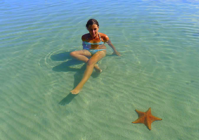 We love our Starfish: appreciate the wildlife but don't interfere with it!