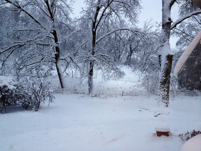 The snowstorm that welcomed me back home the day after I landed was of course a big shock (this is a photo of my parent's back yard), and even though I can't bring Panama's sun to Nebraska, there are other things that I did bring back home with me and plan on keeping!