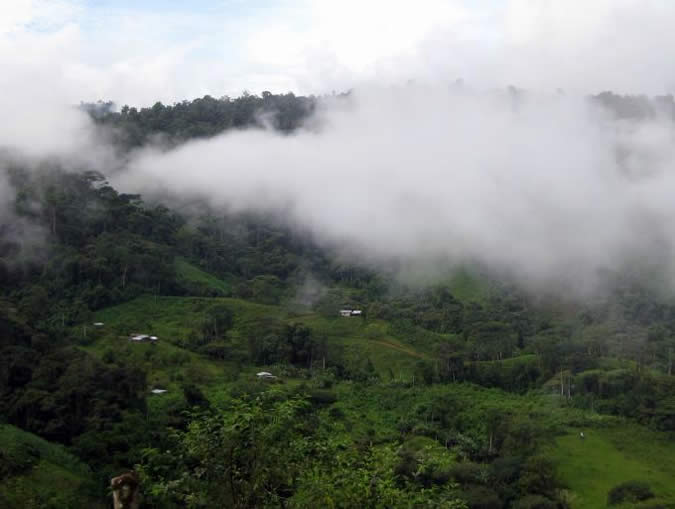 The comarca Ngäbe-Bugle is characterized by mountainous terrain, steep slopes and generally nutrient poor soil with high rock content, all characteristics that make farming difficult.[3] On the Caribbean slope there is no dry season and tropical forest dominates the landscape; on the Pacific slope there is a windy dry season (December to April) and a wet season