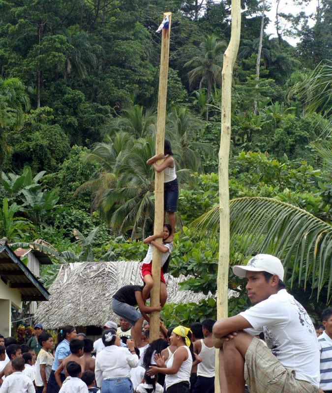 Community activity on Panama's Independence Day (November 3). The goal is to make it to the top of a greased tree trunk.