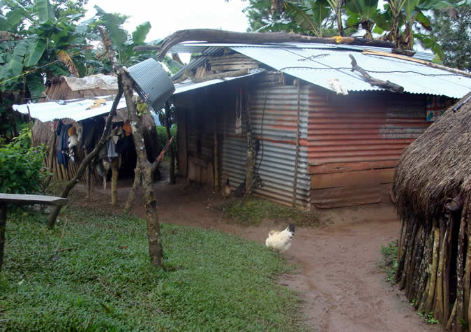 View of some living/store spaces in Hato Chami. The zinc house is partially a small store.