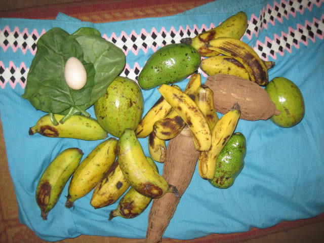 Two different varieties of bananas, avocadoes, spinach-like leaves, yuca, an egg.
