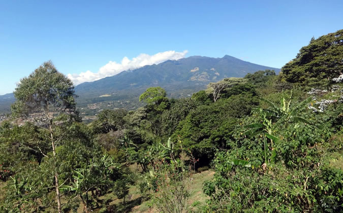 Finca Luz in Boquete, Panama, is a truly enchanting place